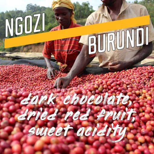ngozi burundi coffee
