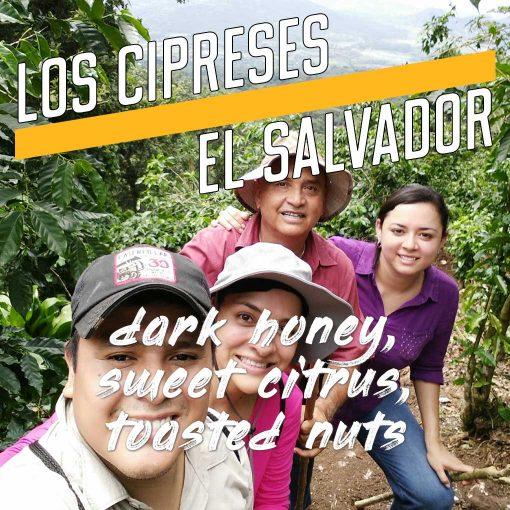 Los Cipreses El Salvador Coffee Category Image