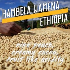 hambela-wamena-ethiopia-coffee